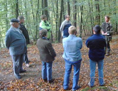 Bild vom Gemeinderat im Wald