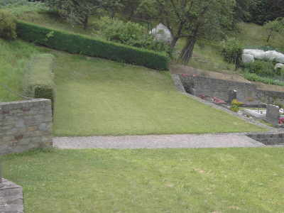 Bild der Rasenfläche