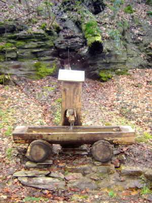 Bild des Burgbrunnen