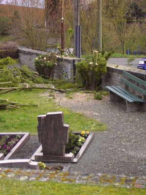 Bild vom Friedhofseingang mit der gekürzten Eiben