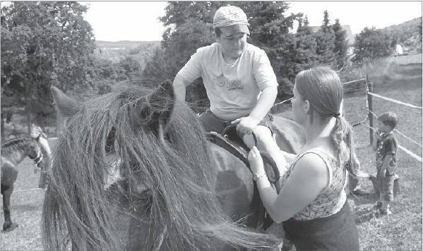 Bild von der Pferdeinsel